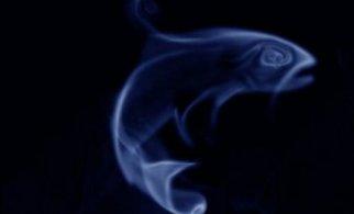 В поисках легких способов расстаться с курением
